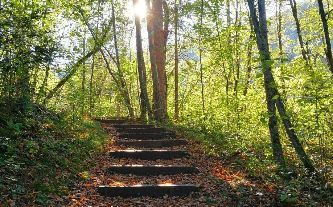 Trekking Val di Non: scoprire la magia dell'autunno