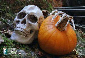 Speciale Halloween nel Parco Fluviale Novella